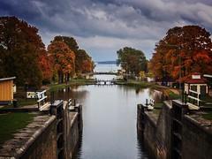 Bergs slussar i höstkläder ( Östergötland ) The sluices in Berg (Sweden ) with autumn colours  #sweden_photolovers #loves_sweden #landscape #excellent_nordic #shotsbyyou #ig_week_nature #igsweden #sluice #berg #östergötland #sweden #slussar #autumn #inspi