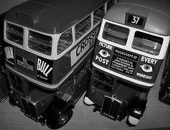 (Ledlon89) Tags: modelbuses diecastbuses scalemodels scaleddown sunstar london bus buses transport londonbus londonbuses londontransport aec routemaster rtbus rt