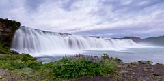 1:00am Waterfall (TP DK) Tags: silky iceland waterfall river purple earlymorning longexposure milky lupins