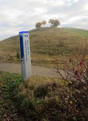 10-IMG_4162 (hemingwayfoto) Tags: berg hgelrcken hannover herbst kronsberg landschaft natur weg wegweiser