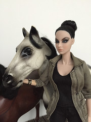 Sindy horse (non-articulated) (Kamikaze Drosophila) Tags: pedigree sindy horse fashionroyalty integritytoys agnesvonweiss highgloss doll 16scale