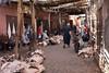 The souks of Marrakesh (Stefan Napierala) Tags: marocco marokko morocco marrakech marrakesch marrakesh maghreb souq suq stefannapierala