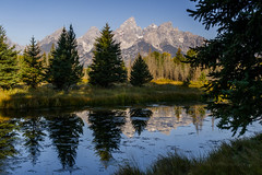 Trees Behind Shading the Trees in Front (Jeffrey Sullivan) Tags: grand teton national park grandtetonnationalpark landscape nature travel photography wyoming unitedstates roadtrip usa canon photo copyright 2006 jeffsullivan september reflection