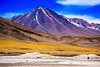 Chile 2013-2851 (sebtac) Tags: chile2013 chile 2013 outdoor reservanacionallosflamencos