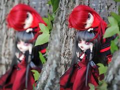 .: Khamik & Loki :. (.: Miho :.) Tags: pullip grell black butler kuroshitsuji fc fullcusto kikyô vampire khamik darek jun planning junplanning groove doll dolls obitsu 27cm parabox