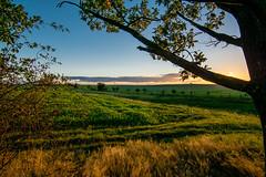 Herbstlandschaft - autumn landscape (ralfkai41) Tags: felder hagebutte landscape sunset sonnenuntergang fields herbst autumn natur landschaft