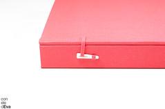 Estuche japons y encuadernaciones en acorden (Con Ele de Eva) Tags: japanesecase concertinabook handbound handmade bookbinding case boxes engraving estuchejapons acorden grabado encuadernacin artistbook librodeartista estuche