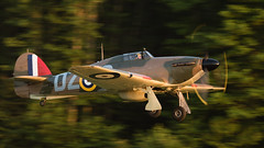 Hawker (CCF) Hurricane Mk12 Fly-By (4myrrh1) Tags: hawker hurricane fighterfactory fighter ww2 wwii virginia va virginiabeach pungo militaryaviationmuseum military british aircraft airplane aviation airshow airplanes airport grassstrip sunset canon ef100400l 7dii