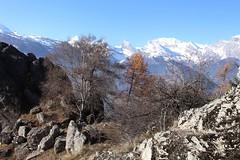 Isérables (bulbocode909) Tags: valais suisse isérables montagnes nature arbres automne rochers paysages bleu orange