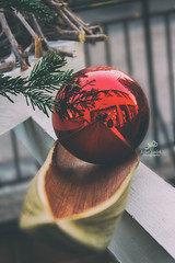 Christmas decorations (zaher.ziadeh) Tags: white christmas stilllife colmar france red noël natale wood