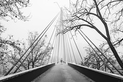* (__MV__) Tags: mannheim collini brücke nebel neckar schwarzweiss schwarzweis sw sundw bw blackandwhite blackwhite monochrom monochrome leica m240 summicronm asph 35mm summicronm35mm bridge fog