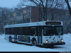 Winnipeg Transit #481 (vb5215's Transportation Gallery) Tags: winnipeg transit 1999 new flyer d40lf