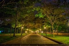 DSC_0053 (tharu_____dilan) Tags: path colombo srilanka road treeline city