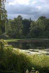 MILL LAKE SEASONS:  Storm's brewing.....dark clouds and dark water...but neat reflections.   (Mill Lake, Abbotsford) (vermillion$baby) Tags: cloud storm abbotsford fraservalley bc canada milllake lake seasons summer green milllakeseasons wetlands
