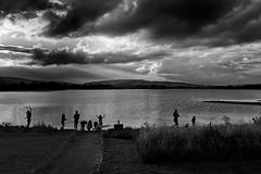 last light (zip po) Tags: ireland sunset white lake mono evening bnw blackand coleitrim