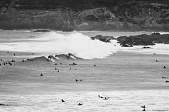 Newquay (james.archibald) Tags: ocean beach water surf crowd newquay wave surfing busy