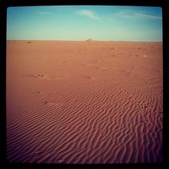 Our gold #Alkufra #libya #desert #sand #sky