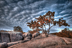Tree Rock (Jon Dickson Photography) Tags: sky dramatic drama hdr tonemapped mygearandme mygearandmepremium mygearandmebronze mygearandmesilver mygearandmegold mygearandmeplatinum mygearandmediamond