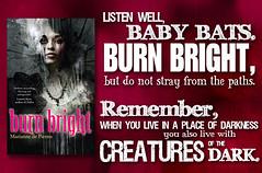 burnbright TT banner