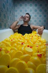 No Number | Ducks (Nicola Bernardi) Tags: portrait rome roma duck nikon ba