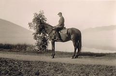 A man on horseback (TrueVintage) Tags: horse animal vintage 1930s reiter oldphoto past rider pferd foundphoto 1939 tier horseman vergangenheit vintagephoto vintageanimal 1930erjahre vintagehorseman
