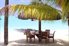 IMG_2609 (federica.piersimoni) Tags: blogger mauritius blogtour maublogtour13