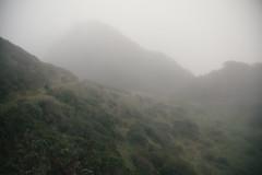 The Lost Coast (NatVon Photography) Tags: california nature fog foggy hike trail wilderness lostcoast