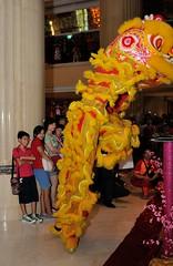 Img380728nx2_conv (veryamateurish) Tags: singapore chinesenewyear liondance shangrilahotel
