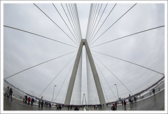 New Bridge Opening 2014-02-08 2 (bobcrowe_com) Tags: bridge illinois memorial stlouis stan missouri mississippiriver opening veterans select musial stanmusualveteransmemorialbridge