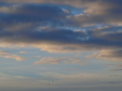 Sous des cieux plus cléments * (Titole) Tags: blue sky clouds cloudy explored friendlychallenges titole nicolefaton