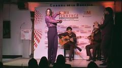 Suma Flamenca 2014 grabalia5k