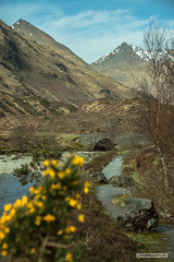 View from below the site of the battle of Glen Shiel, 1719. (Scotland by NJC.) Tags: scotland unitedkingdom gb mountains hills highlands peaks fells massif pinnacle ben munro heights جَبَلٌ montanha 山 planina hora bjerg berg montaña vuori montagne βουνό montagna fjell river stream waterway tributary brook canal watercourse creek beck burn نَهْر rio 河流 rijeka řeka flod rivier joki fleuve fluss fiume 강 흐르는 물 elv valley vale gorge dale glen strath cwm coomb rift faultline وادٍ 山谷 dolina údolí dal vallei