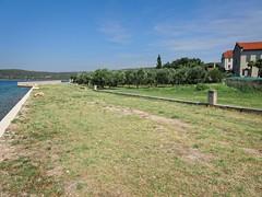 koljun2016-09_11 (sinisa977) Tags: koljun krk hrvatska croatia kosljun franjevci jeronim franciscans samostan monastery olive maslina adriatic sea jadransko more