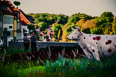 Strawberry (Melissa Maples) Tags: ludwigsburg germany europe nikon d5100   nikkor afs 18200mm f3556g 18200mmf3556g vr autumn sculpture art animal cow germans women strawberries bridge