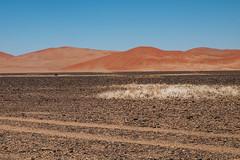 namibia2015-123 (yriis) Tags: namib desert sand immensity uninhabited wildness dune travel 45 red sky blue africa namibia kalahari