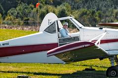 N6112Z 1960 PIPER PA-25 PAWNEE -   VSA 8 (massey_aero) Tags: vintagesailplaneassoc sailplane glider vsarally pa25 pawneepiper piperpawnee glidertowplane masseyaerodrome masseyairmuseum vsarallyatmassey