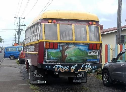 Tree of Life Bus