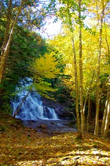 Wentworth, NS Fall Colours 2016 (kimshand) Tags: wentworth wentworthvalley waterfalls ns novascotia nature fall autumn autumncolors autumncolours october trees blueberry stream colours colors fallcolors fallcolours falls pentax visitns nsleafwatch