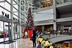 The Shoppes @ Marina Bay Sands (chooyutshing) Tags: xmastree decorations theshoppesatmainabaysands marinabaysands attractions christmasfestival2016 marinabay singapore