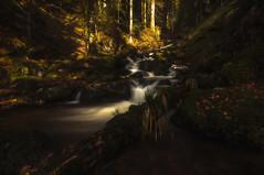 Comme un conte de fes (Didier Bonnette Photographies) Tags: waterfall waterscape