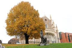 Madrid 007 Los Jernimos. (Joanbrebo) Tags: spain espaa tree arbre arbol losjernimos madrid autofocus eos canoneos80d efs1855mmf3556isstm