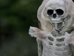 The Last Laugh (Jam-Gloom) Tags: halloween spooky hallowseve halloweve allhallows olympusomdem5 olympusomd olympusuk 60mm28 60mmmacro28 60mmmacro bokeh bokehful bokehlicious depthoffield dof scary creepy autumn autumnal fall october skeleton skull skele skelly brideandgroom mykindofwedding bride groom hauntingly haunting doll skeletondoll toy