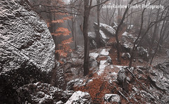 Mystery of Winter Rocks (Jenny Rainbow (jenny-rainbow.pixels.com)) Tags: jennyrainbowfineartphotography winter woods mysteriouswoods forest winterscene rocks winterwoodssnowywoods snowyforest winterforest snowyrocks foliage fallfoliage landscape pinetrees winteratmosphere gothic gothicatmosphere monochrome brown white snow stones rural nature winternature foresttreebranches chaos ice scenery fineartlandscape trees wintertrees mysterious calm tranquilityserenity zen mist mistywoods fineartphotography czechrepublic lelekovice babilom pine