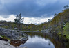 Mother's Pool (Ivan Dennis Photography) Tags: norge norway pond preikestolen hike trail water clouds forest tree