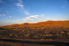 Merzouga #4 (Matthew on the road) Tags: merzouga marocco maroc september 2016 september2016 travel travelling matthewontheroad road roadto roadtomerzouga desert sun