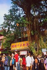 _8 (Taiwan's Riccardo) Tags: 2016 taiwan color 135film fujifilmrdpiii transparency plustek8200i rangefinder leicam5 leicalens fixed summaronm 3535