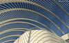 Learning curves (Shannon Rose O'Shea) Tags: shannonroseoshea shannonosheawildlifephotography shannonoshea shannon architecture building modern blue white sky curves lines shadows floridapolytechnicuniversity lakeland florida canon canoneosrebelt6i canont6i canoneost6i canonrebelt6i eost6i eosrebelt6i rebelt6i t6i learningcurves santiagocalatrava
