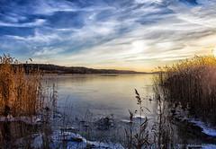 Winter skies (Joni Mansikka) Tags: nature winter skies clouds white blue sea ice reed sunlight outdoor landscape colours light piikkiö suomi finland canonef2880mmf3556