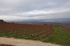 Johannisberger Türmchen - Blick nach Bingen und ins Rheintal