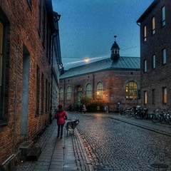 INSTAGRAM 365 Day 331: I see you back there! (tomas_nilsson) Tags: instagram365 sweden lund dog dogwalker husky street streetphotography urban dusk sunset twilight fadinglight hdr cobblestones bricks red cellphonephotography lg g4 snapseed postprocessing